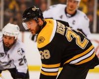 今后标记Recchi,波士顿熊 免版税库存图片