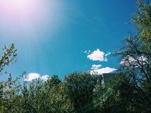 以后的春天 晴朗的日 库存照片