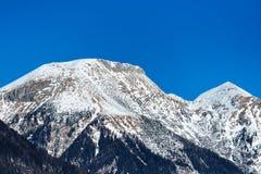 后边积雪覆盖的朱利安阿尔卑斯山和清楚的天空 免版税库存照片