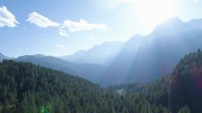 后退向松木森林和山谷与太阳火光在夏日 欧洲意大利阿尔卑斯室外绿色 影视素材
