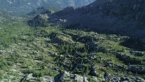 后退在与马塔角的松木谷上在晴朗的夏日 欧洲意大利阿尔卑斯瓦尔d `室外的奥斯塔 影视素材