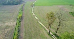 后退在绿色领域和石渣道路在夏日 欧洲意大利室外绿色自然scape天线 股票视频