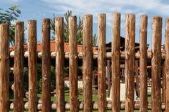 后院的高木篱芭 库存图片
