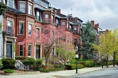 后面海湾波士顿在春天 免版税库存图片