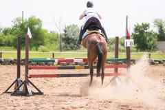 后面观点的与一个车手的一匹马在起飞期间,当跳跃通过障碍时 图库摄影