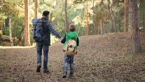 后面观点的愉快的走在有谈话的背包的森林里的家庭孩子和父亲握手和,男孩投掷 股票录像