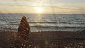 后面观点的有格子花呢披肩的少妇在岸海和调查距离 海滩的沉思妇女在日落 影视素材