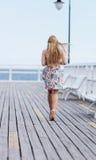 后面观点的有美丽的白肤金发的平直的长的头发的年轻女性 免版税库存照片