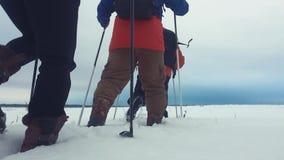 后面观点的有迁徙的杆、背包和雪靴的三个旅游徒步旅行者 与背包的愉快的徒步旅行者小组 股票视频