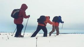 后面观点的有迁徙的杆、背包和雪靴的三个旅游徒步旅行者 与背包的愉快的徒步旅行者小组 股票录像