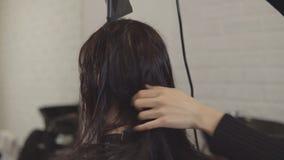 后面观点的美发师设计师做称呼对一个少妇的头发 股票视频
