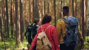 后面观点的走在有背包,看和谈话的森林里的青年人游人 友谊,活跃 影视素材