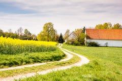 向一个农场的乡下公路强奸领域的 免版税图库摄影