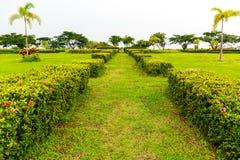 向一个庭院的中心的一条道路有花和绿色植物的o 免版税库存图片
