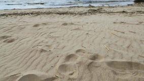 向上离开沙滩和海的照相机移动 影视素材