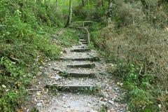 向上去木的楼梯 免版税库存图片