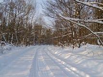 向冬天木头的路 免版税库存图片