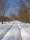 向冬天木头的路 图库摄影