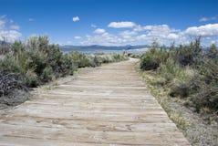 向南凝灰岩,莫诺湖-加利福尼亚的道路 图库摄影