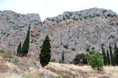 向古希腊建筑学废墟的路在特尔斐附近镇的希腊06的南部的 17 2014年 免版税库存照片