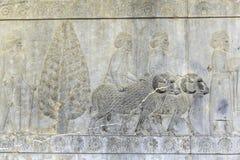 向古老废墟市扔石头被雕刻的安心波斯波利斯伊朗 免版税库存照片