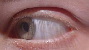 向右观看和向左观察周围的绿色眼睛特写镜头射击 股票视频