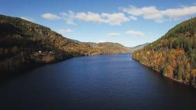 向后飞行在河和树与秋天风景在背景 股票录像