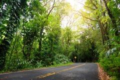 向哈纳的著名路充满狭窄的一车道桥梁、簪子轮和难以置信的海岛视图,弯曲的沿海路有看法 库存照片