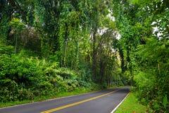 向哈纳的著名路充满狭窄的一车道桥梁、簪子轮和难以置信的海岛视图,毛伊,夏威夷 库存照片