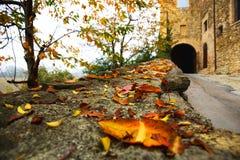 向城堡的入口路在秋天 免版税库存图片