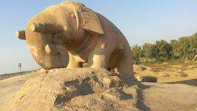 向大象扔石头 库存图片