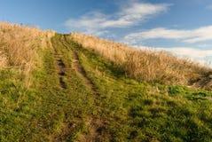 向天堂的自然路通过草甸,梦想场面图片, Tynemouth,英国 免版税库存照片