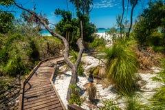 向天堂的道路,在昆士兰,澳大利亚whitehaven海滩 库存图片