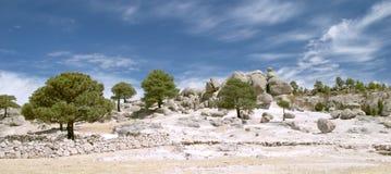 向奇怪的结构树扔石头 免版税库存图片