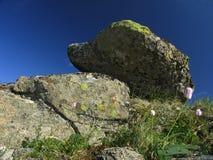 向寒带草原扔石头 库存照片