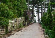 向小山的走的路在大叻,越南 免版税库存图片
