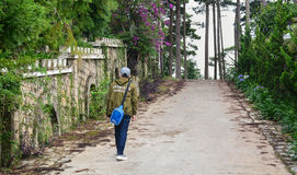向小山的走的路在大叻,越南 免版税库存照片
