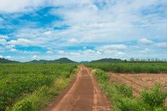 向山和蓝天的空的土路 对背景 库存照片