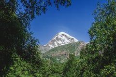 向庄严山Kazbek的道路与在落叶树中的多雪的山峰在夏天 免版税库存照片
