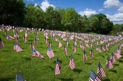 向我们的退伍军人致敬 图库摄影