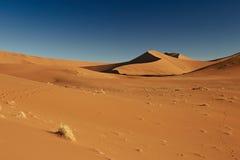 向无处的沙漠路 免版税库存照片