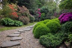 向日本庭院的道路 库存图片