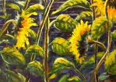 向日葵丙烯酸酯,向日葵原始的手画艺术开花的油画,在太阳的美丽的金向日葵在帆布开花 免版税库存照片