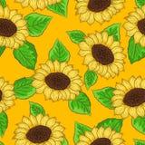 向日葵传染媒介的无缝的样式与绿色叶子的 免版税库存图片