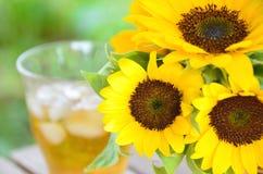 向日葵和被冰的茶 图库摄影