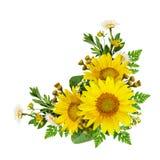 向日葵和野花在壁角安排 图库摄影