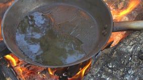 向日葵或橄榄油在一个热的煎锅烹调的在篝火 影视素材