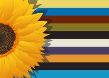 向日葵抽象卡片 免版税库存照片