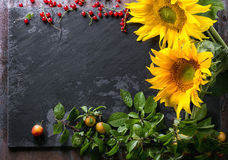 向日葵用莓果 库存图片