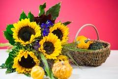向日葵用装饰南瓜当秋天装饰, postcar 库存照片